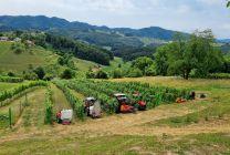 Demonstracija kmetijske mehanizacije, 11. 7. 2021