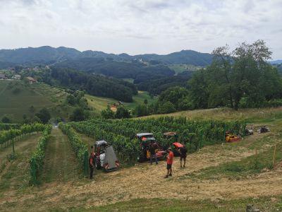 Delo v vinogradu I Agromehanika d.d.